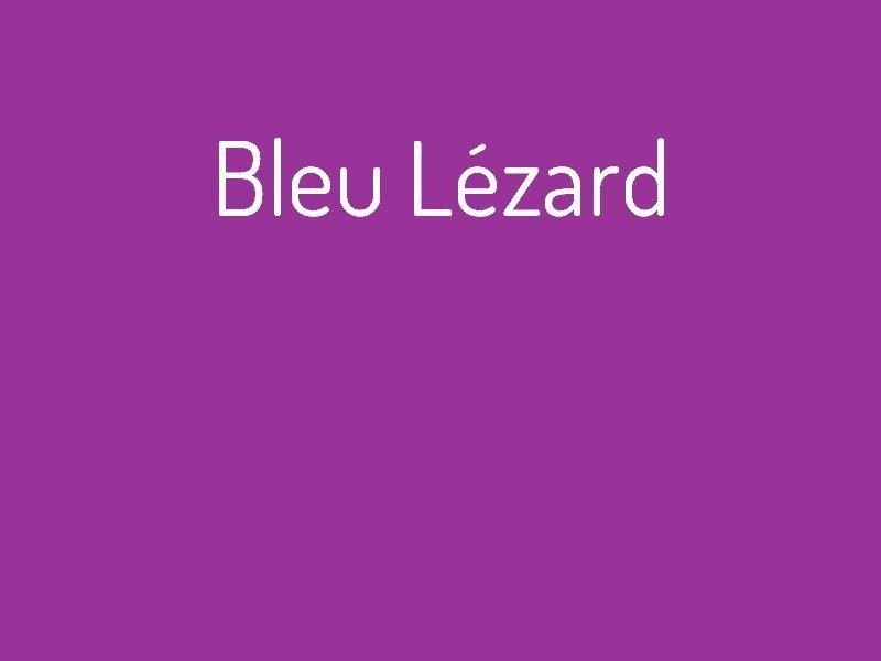 bleu_l_zard