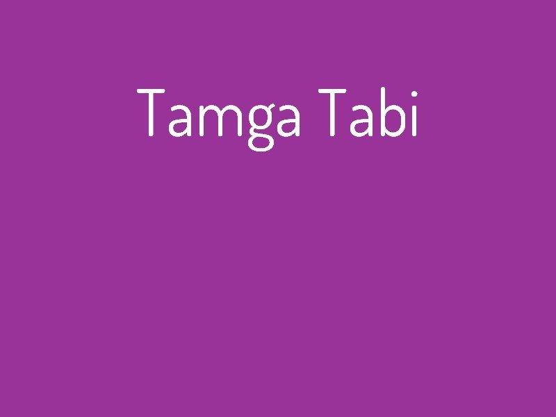 tamga_tabi